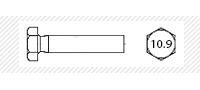 Болт класс прочности 10.9 с основным шагом резьбы  (DIN 931; 933)