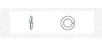 Шайба пружинная (DIN 127В)